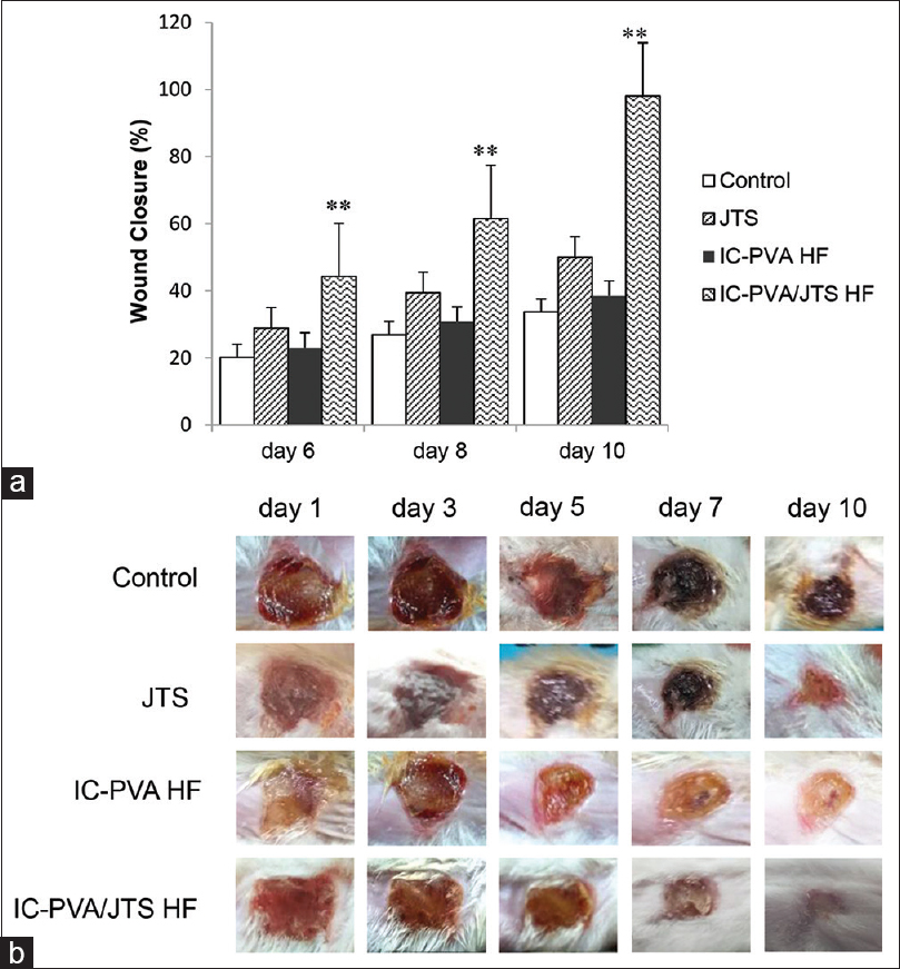 Figure 5: (a) The percent of wound closure at day 6, 8, and 10; (b) Macroscopic visualization of wound healing process at day 1, 3, 5, 7, and 10. The in vivo wound closure study was performed in full-thickness excisional wounds of mice on the 1st-10<sup>th</sup> days. Each value represented the mean ± S.E.M. *<i>P</i> <0.01 compared with non-treated group
